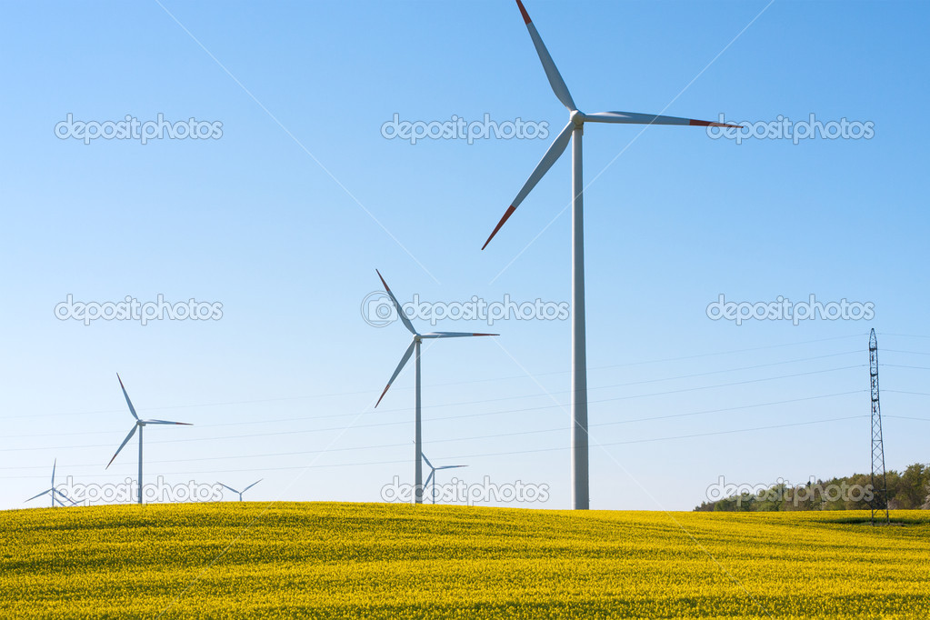 Rape seed field with wind turbines generating electricity — Stock Photo #5221225