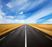A long the road — Stock Photo