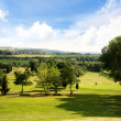 Golf course on a beautiful summer day — Stock Photo