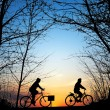 Stock Photo: Cyclists