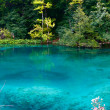 Turquoise lake - Stock Photo