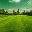 Royalty-Free Stock Photo: Golf field