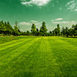 Golf field — Stockfoto #3968627