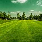 campo de golf — Foto de Stock