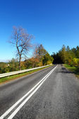 Autumn landscape - road — Stock Photo