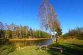 Paisagem de lago outono colorido — Foto Stock