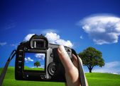 Woman photographing landscape — Stock Photo