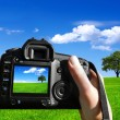 Photo nature — Stockfoto #3986717