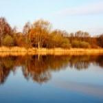 Autumn lake — Stock Photo