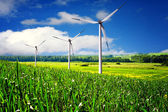 Wind turbines farm in summer — Stock Photo