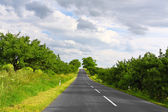 Empty road — Stockfoto