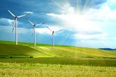 Rüzgar türbinleri çiftliği yeşil ada — Stok fotoğraf