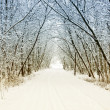 Cold and snowy winter road — Stock Photo #4248413