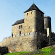 Medieval castle — Stock Photo #4334228