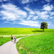 Green summer landscape - Stock Photo