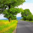 Mountain road - Foto Stock