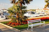 Panchina vuota al parco sul mare — Foto Stock