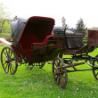 Antique carriage in the park - Stock Photo