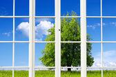 Ecology Window — Stock Photo