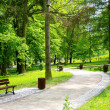 Beautiful Spring Park — Stock Photo #4582193