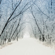 Winter alley - Foto Stock