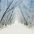 Royalty-Free Stock Photo: Winter alley