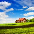 New house in the mountains — Stock Photo