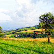 Countryside Landscape — Stock Photo #4821364