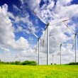 Stock Photo: Wind turbines on spring field