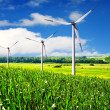 Turbines farm in summer - Stock Photo