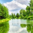 Green nature landscape - Foto de Stock