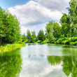Green nature landscape - Foto Stock