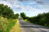 Summer road — Stock Photo