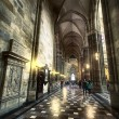 St. Vitus Cathedral Prague - Stock Photo