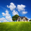 Stock Photo: Family house on green hill