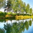 Reflection of trees in the river - Stock Photo