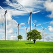 Power and ecology in the nature — Stock Photo #5129006