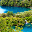 Plitvice Lakes National Park — Stock Photo #5179763
