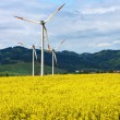 Yellow landscape with turbines — Stock Photo