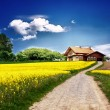 Country landscape with new house — Stockfoto