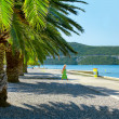 Palm Coast Croatia — Stock Photo #5221405