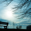 The Park Bench — Stock Photo