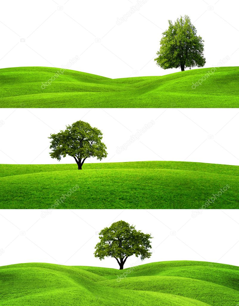 Green Banners  Stock Photo #5222819