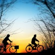 Cycling trip at sunset - Foto de Stock