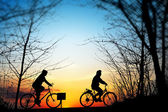 Cycling trip at sunset — Stock Photo