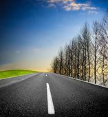 Empty countryside road — Stock Photo