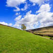 paysage de montagne printemps, yorkshire — Photo