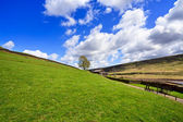 Mountain spring landscape, Yorkshire — Stock Photo