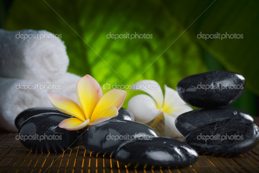 Close up view of  gray stones  and flower  on color back — Stock Photo #4398687