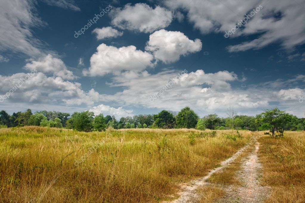 Panoramic view of nice valley  on blue sky background  Stock Photo #5241327